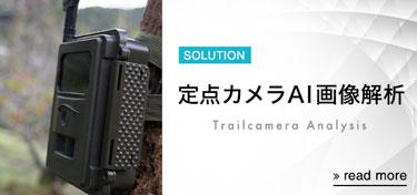 定点カメラAI画像解析